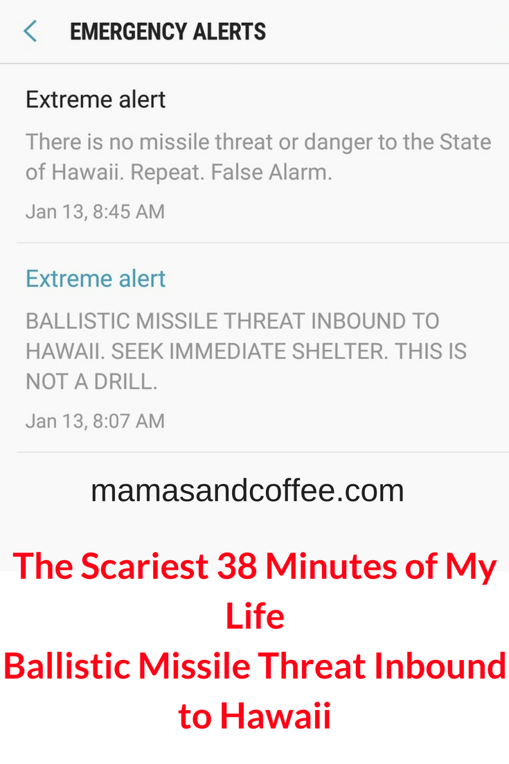 Hawaii ballistic missile alert the longest 38 minutes of my life